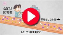 3-14. SGLT2阻害薬薬