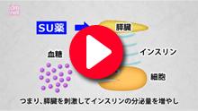 3-8. スルホニル尿素薬(SU薬)